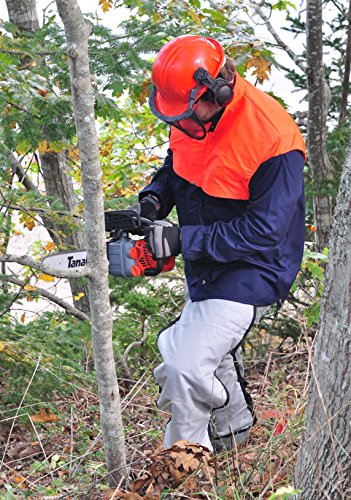 Tanaka TCS33EDTP/12 chainsaw review